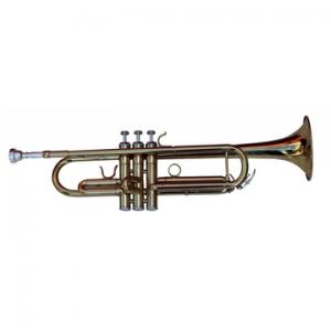 Alexander Gotye 010 Trompete Sib