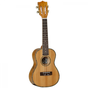 TANGLEWOOD TWT11