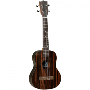 TANGLEWOOD TWT19