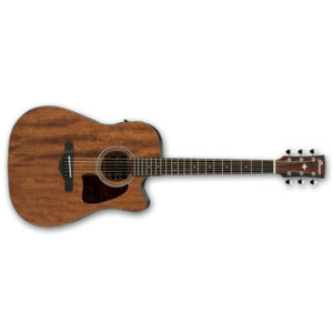 IBANEZ AW54CE-OPN